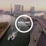 Resilient Rotterdam interimbasis